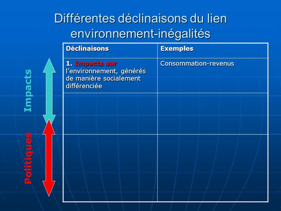 Différentes déclinaisons du lien environnement-inégalités DéclinaisonsExemples 1.