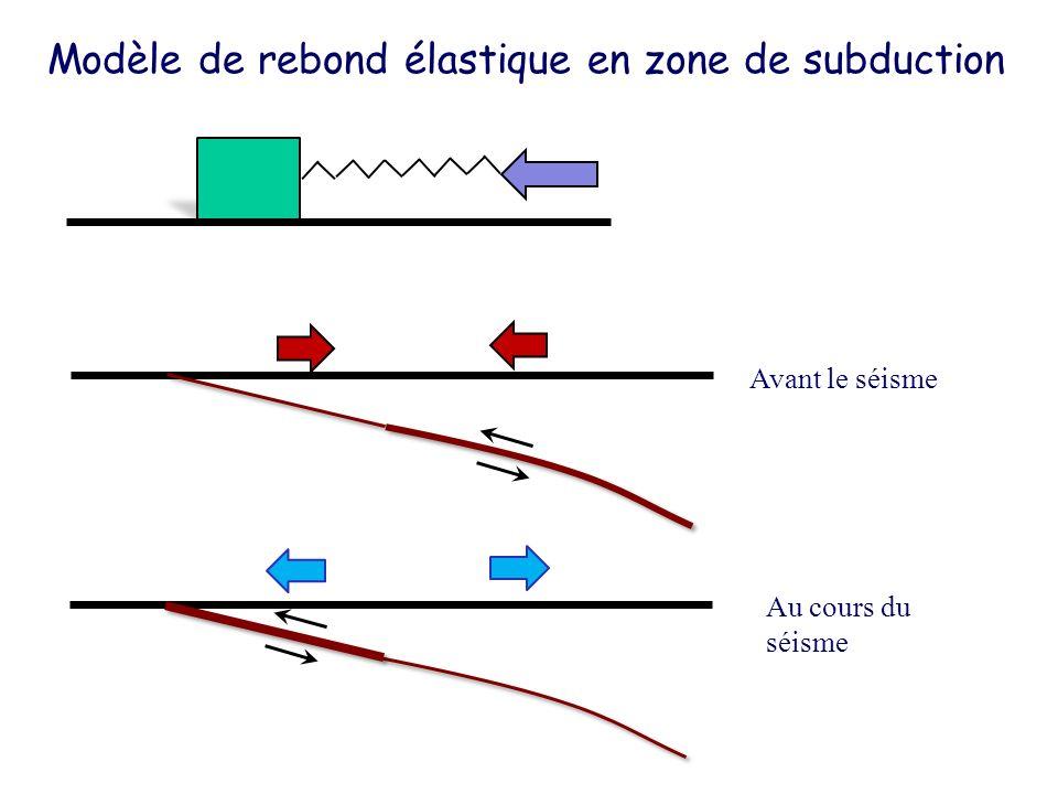 Modèle de rebond élastique en zone de subduction Avant le séisme Au cours du séisme