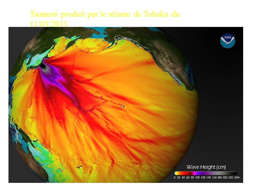 Tsunami produit par le séisme de Tohuku du 11/03/2011