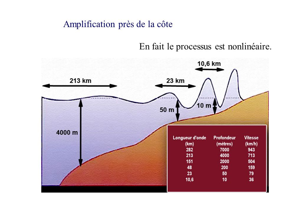 Amplification près de la côte En fait le processus est nonlinéaire.