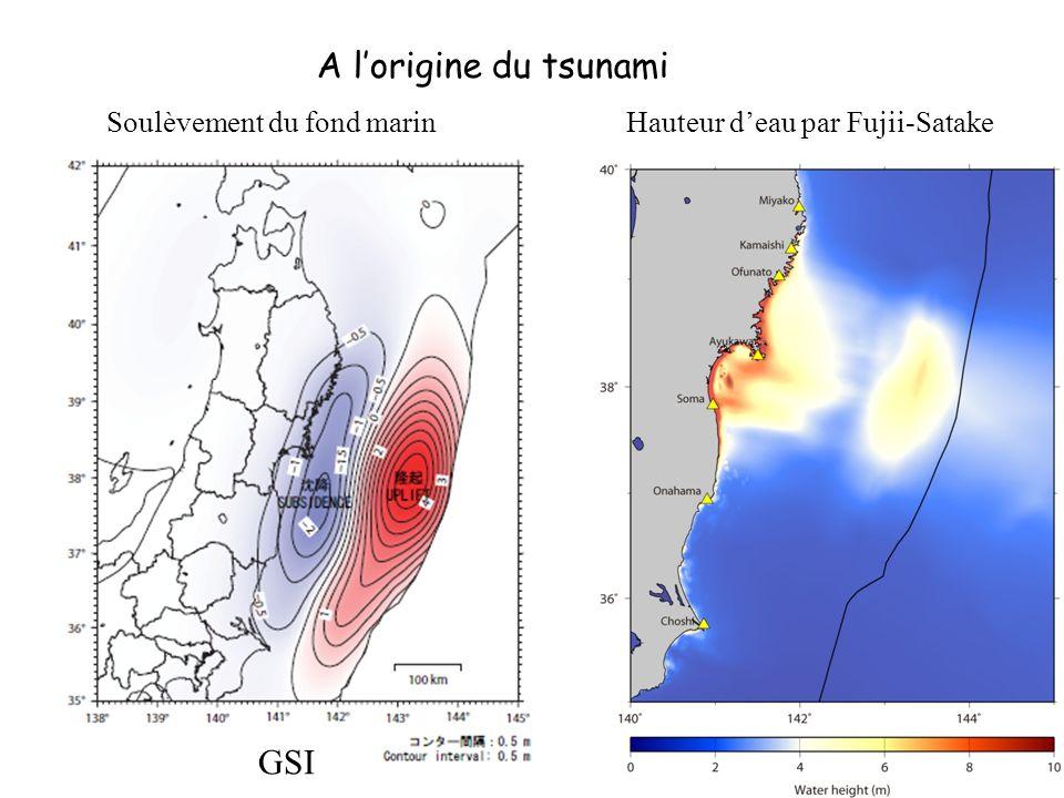 A lorigine du tsunami Soulèvement du fond marin GSI Hauteur deau par Fujii-Satake ISEE –ERI Tsukuba-Tokyo