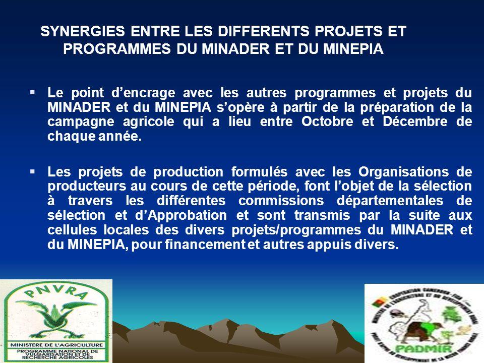 Le point dencrage avec les autres programmes et projets du MINADER et du MINEPIA sopère à partir de la préparation de la campagne agricole qui a lieu