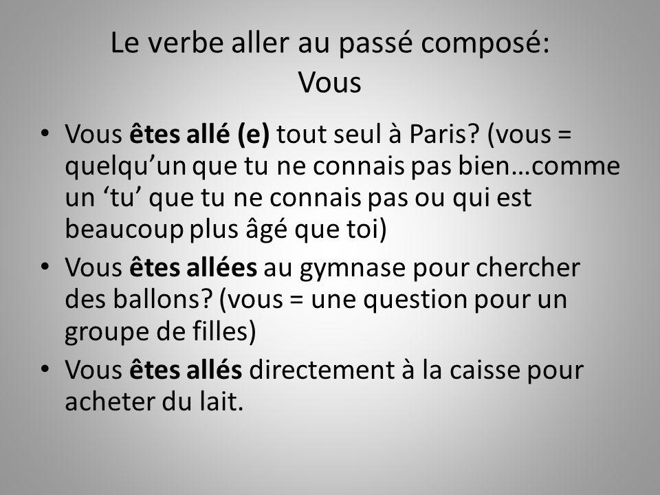 Le verbe aller au passé composé: Vous Vous êtes allé (e) tout seul à Paris? (vous = quelquun que tu ne connais pas bien…comme un tu que tu ne connais