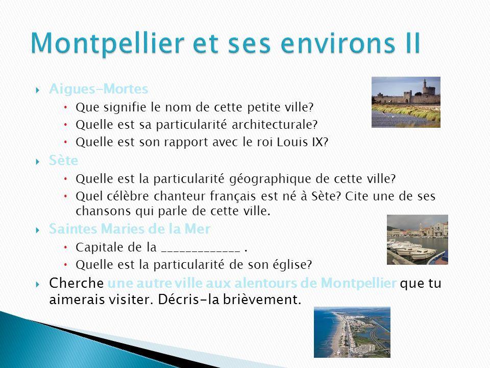 Les alentours de Montpellier regorgent de lieux magnifiques et intéressants à visiter… Avignon Explique brièvement ce quest le Palais des Papes. Cherc