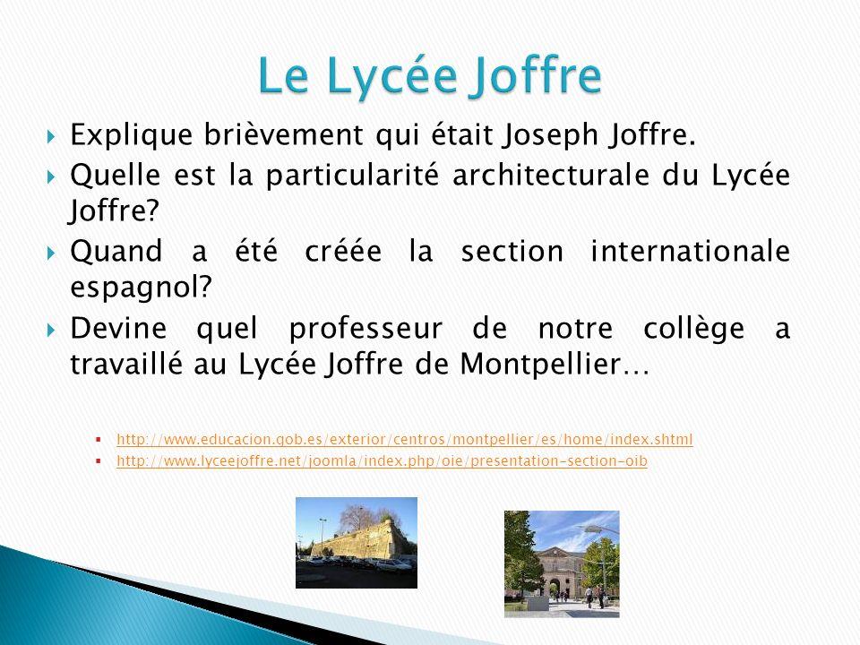 Explique brièvement qui était Joseph Joffre.