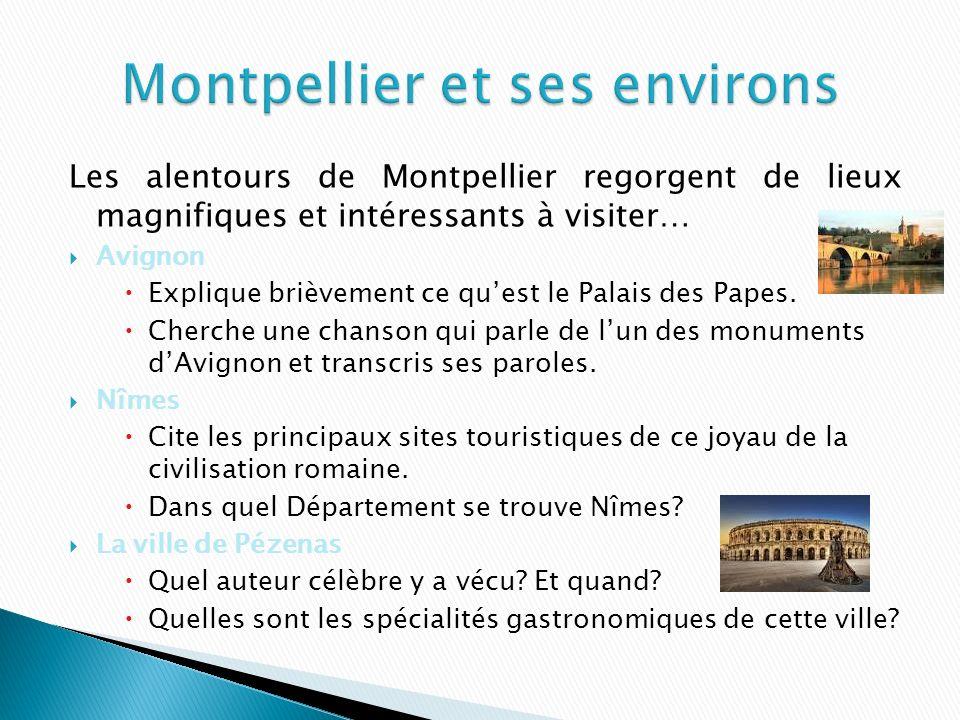 Les alentours de Montpellier regorgent de lieux magnifiques et intéressants à visiter… Avignon Explique brièvement ce quest le Palais des Papes.