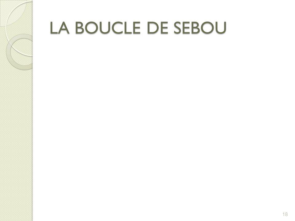 LA BOUCLE DE SEBOU 18