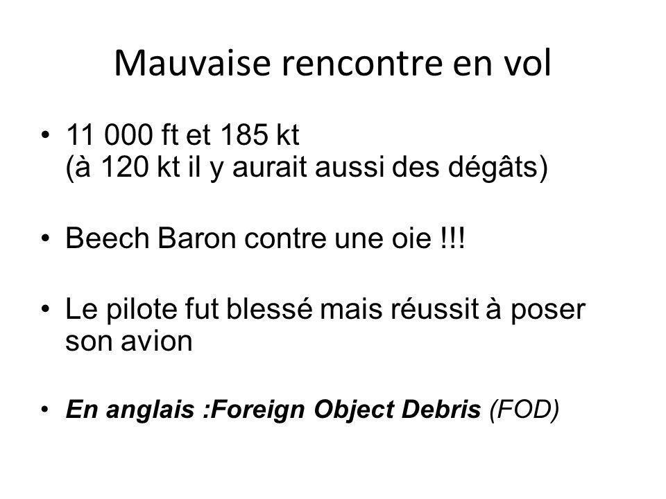 Mauvaise rencontre en vol 11 000 ft et 185 kt (à 120 kt il y aurait aussi des dégâts) Beech Baron contre une oie !!.