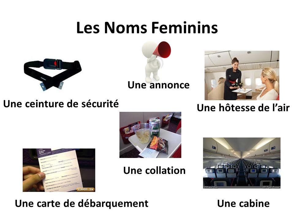 Les Noms Feminins Une annonce Une ceinture de sécurité Une carte de débarquementUne cabine Une hôtesse de lair Une collation