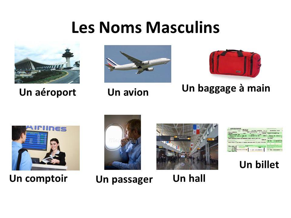 Les Noms Masculins Un aéroport Un baggage à main Un hall Un passager Un comptoir Un avion Un billet