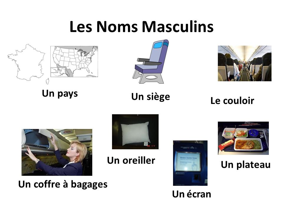 Les Noms Masculins Un pays Un siège Le couloir Un coffre à bagages Un plateau Un oreiller Un écran