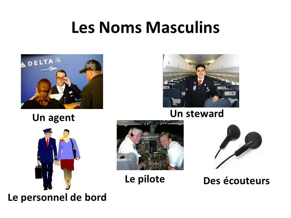 Les Noms Masculins Un agent Le pilote Un steward Le personnel de bord Des écouteurs