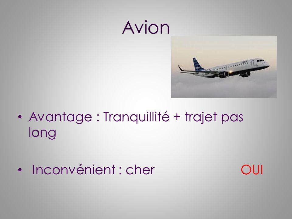 Avion Avantage : Tranquillité + trajet pas long Inconvénient : cher OUI