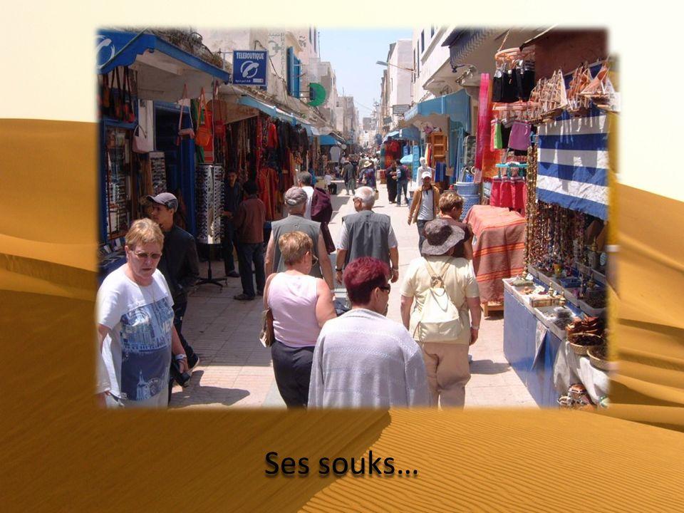 Jour 11 : Zagora - Ouarzazate Ouarzazate par la vallée du Draa et traversée du village dAgdz.