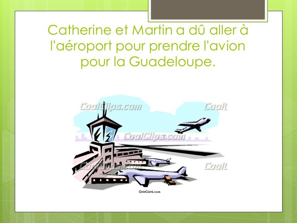 Catherine et Martin a dû aller à l aéroport pour prendre l avion pour la Guadeloupe.
