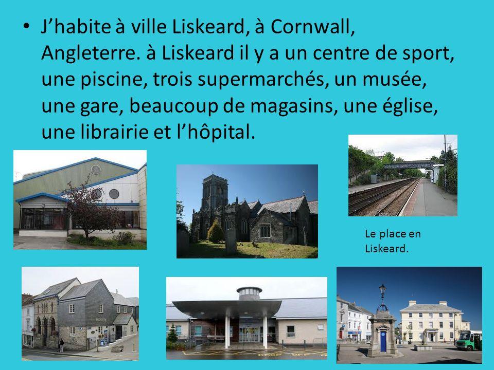 Jhabite à ville Liskeard, à Cornwall, Angleterre. à Liskeard il y a un centre de sport, une piscine, trois supermarchés, un musée, une gare, beaucoup