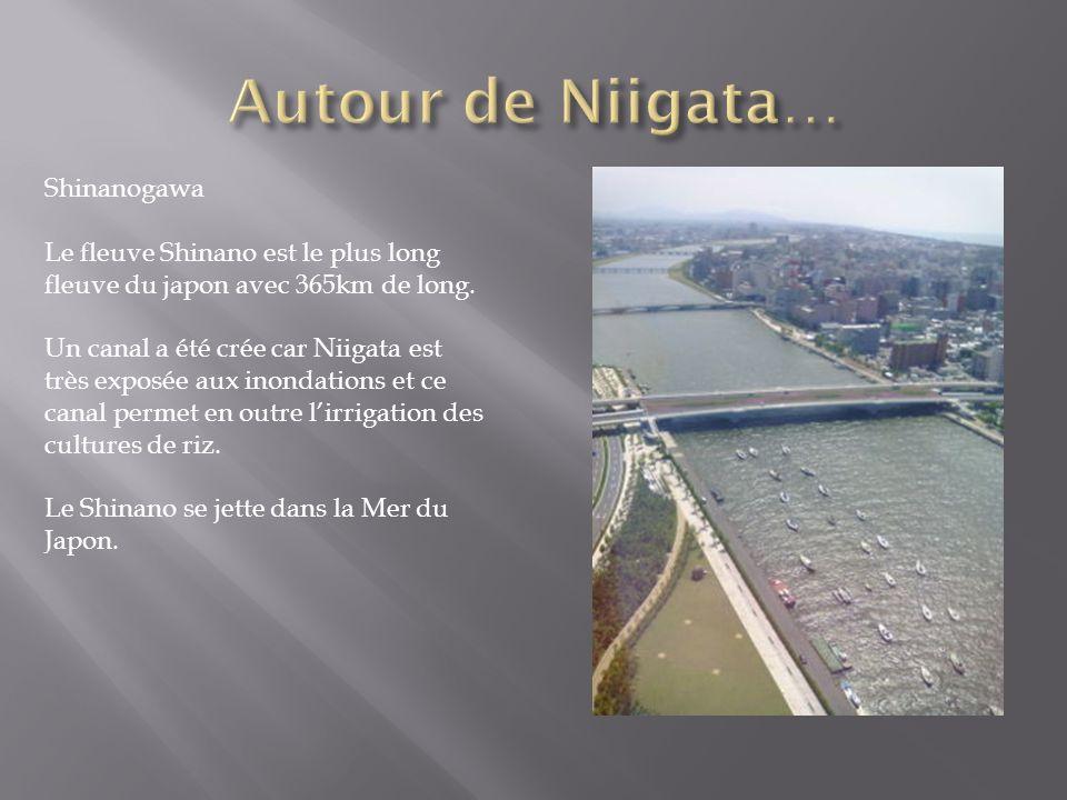 Shinanogawa Le fleuve Shinano est le plus long fleuve du japon avec 365km de long. Un canal a été crée car Niigata est très exposée aux inondations et