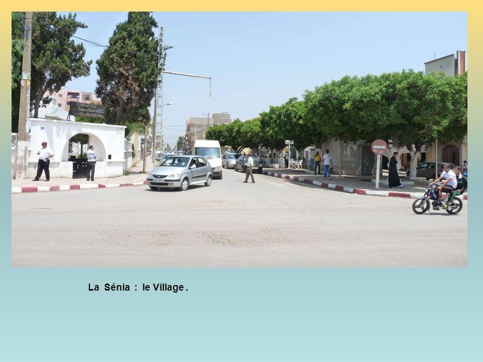 La Sénia : le Village.
