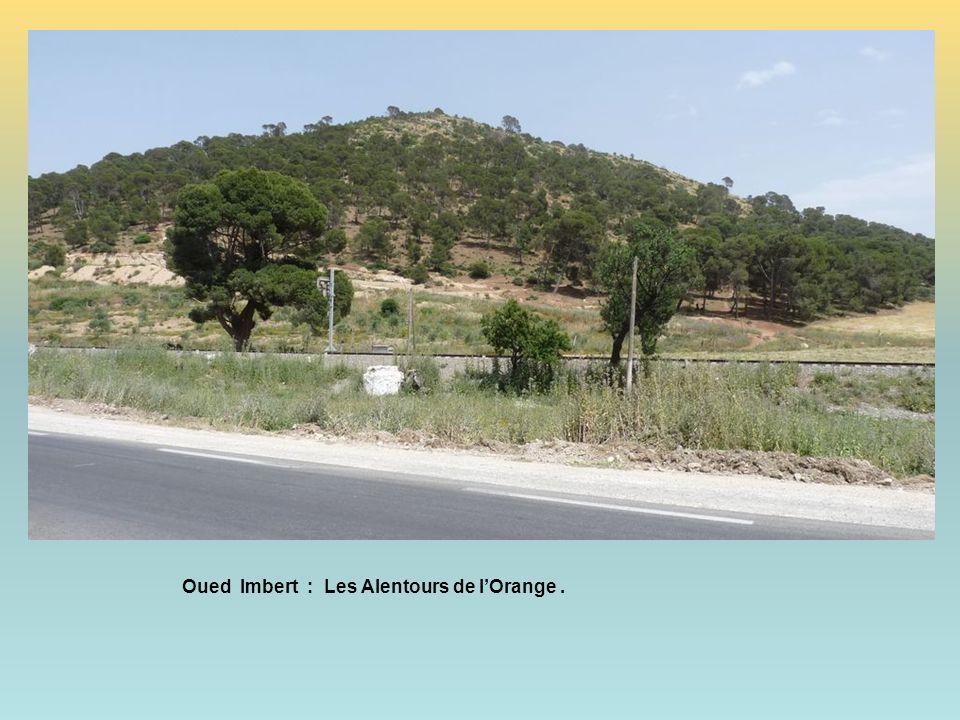 Oued imbert : lorange Sur la route doran