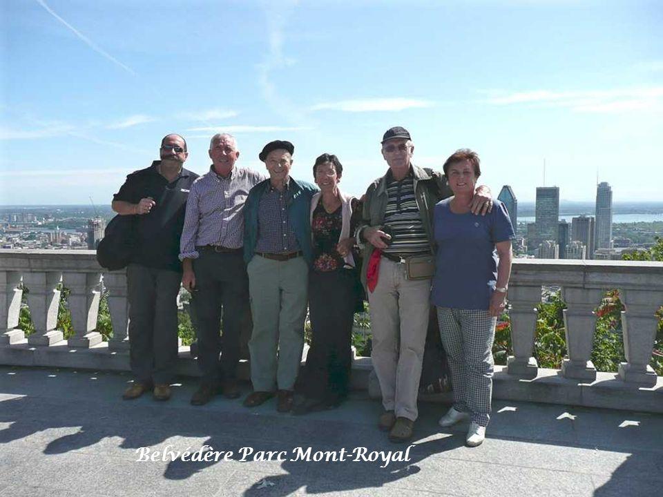 Montréal vu du parc Mont-Royal