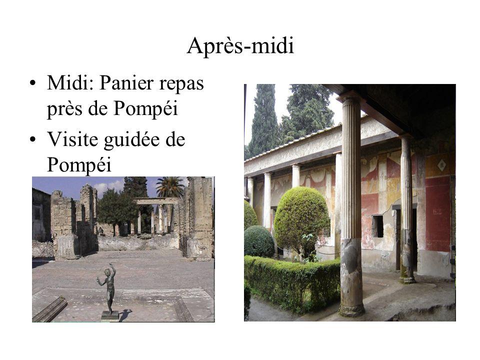 Après-midi Midi: Panier repas près de Pompéi Visite guidée de Pompéi