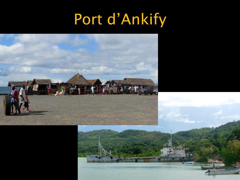 Port dAnkify