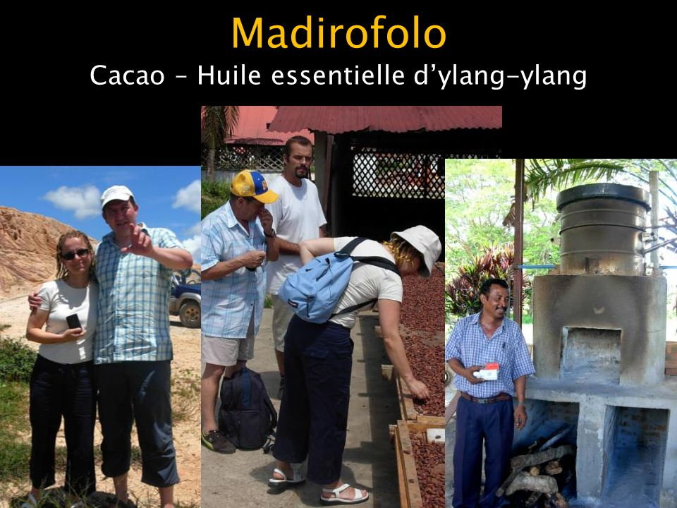 Madirofolo Cacao – Huile essentielle dylang-ylang