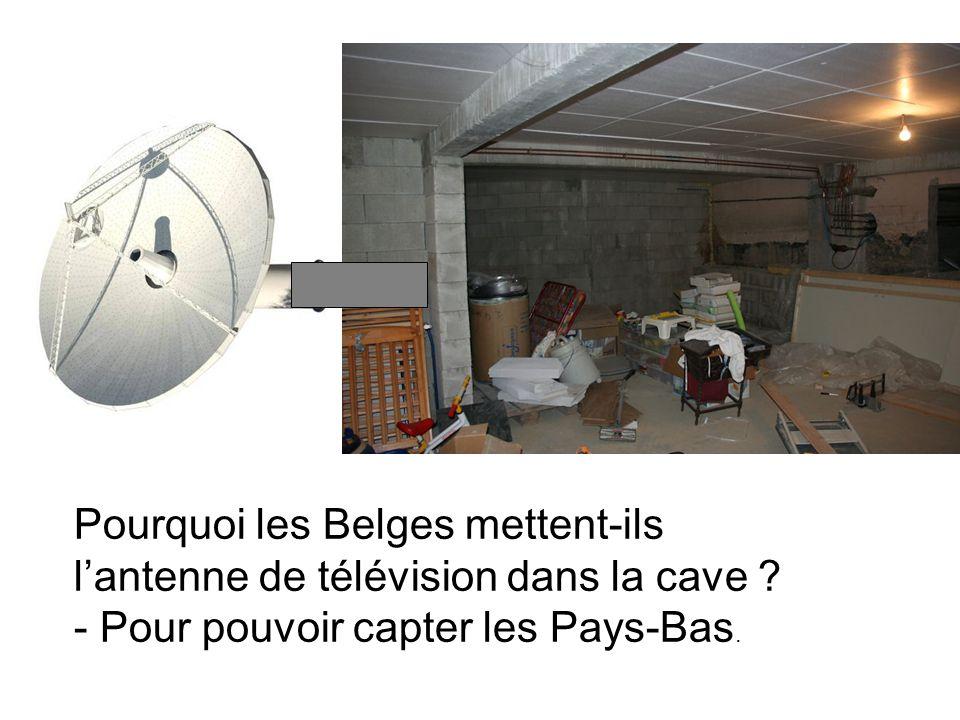Pourquoi les Belges mettent-ils lantenne de télévision dans la cave .