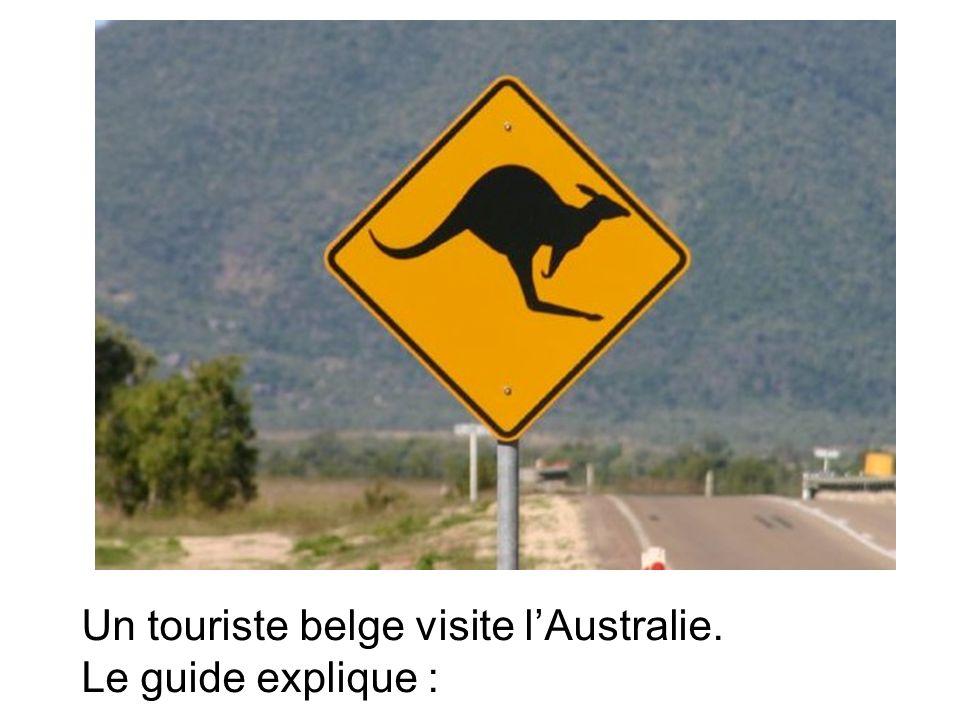 Un touriste belge visite lAustralie. Le guide explique :