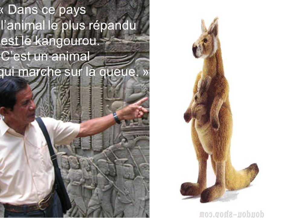 « Dans ce pays lanimal le plus répandu est le kangourou. Cest un animal qui marche sur la queue. »
