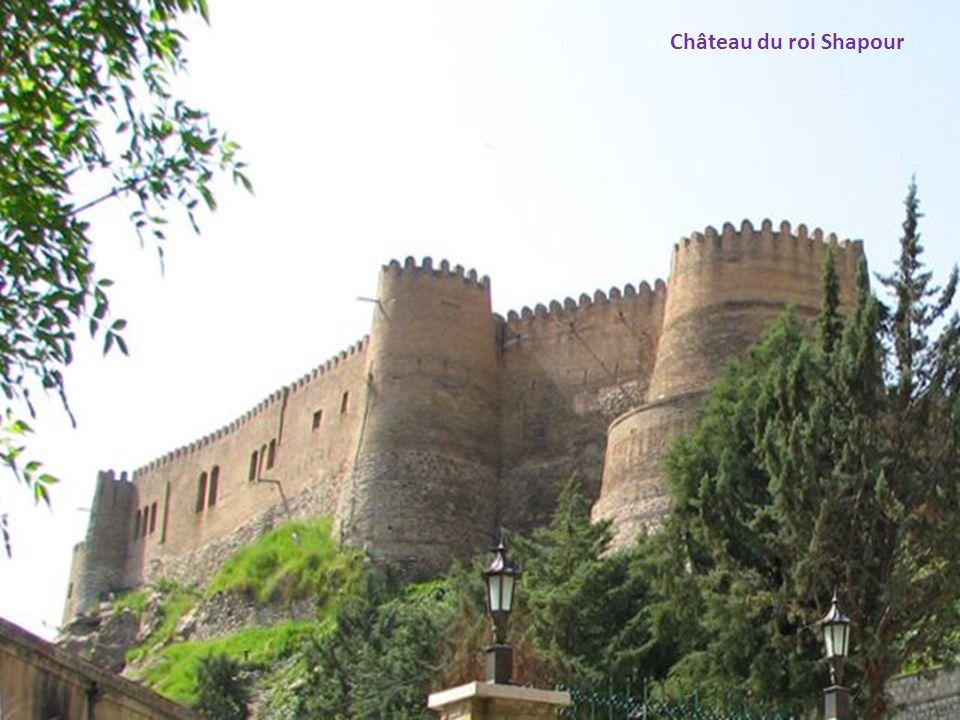 Château du roi Shapour