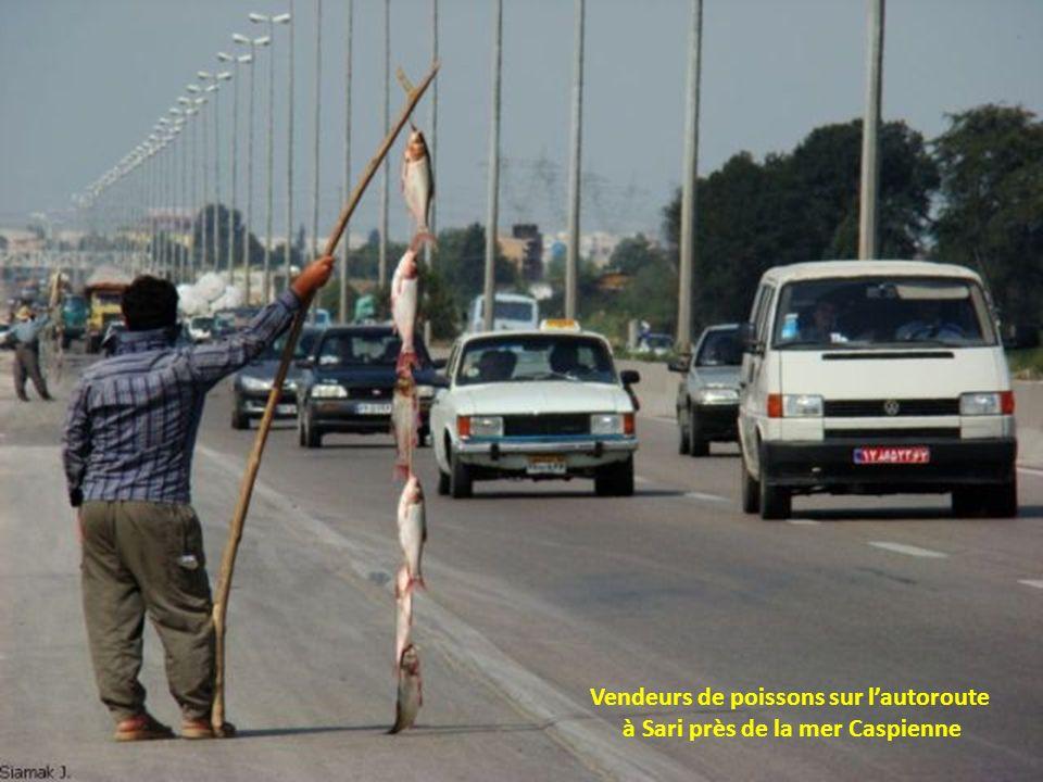 Vendeurs de poissons sur lautoroute à Sari près de la mer Caspienne