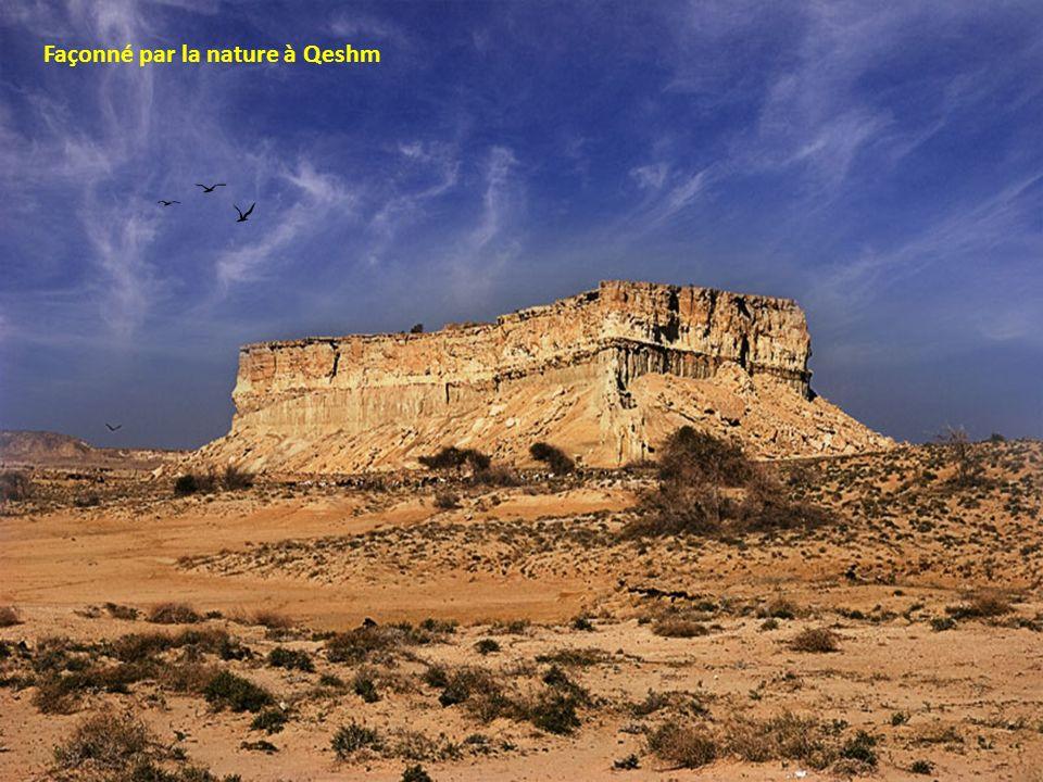 Façonné par la nature à Qeshm