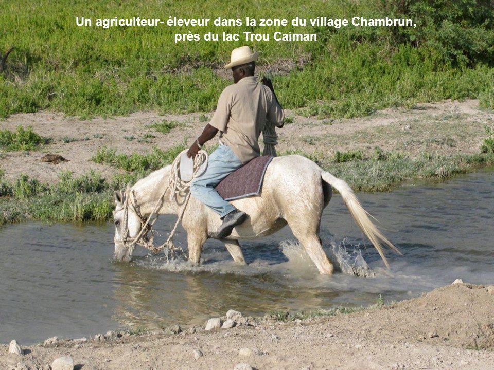 Un agriculteur- éleveur dans la zone du village Chambrun, près du lac Trou Caiman