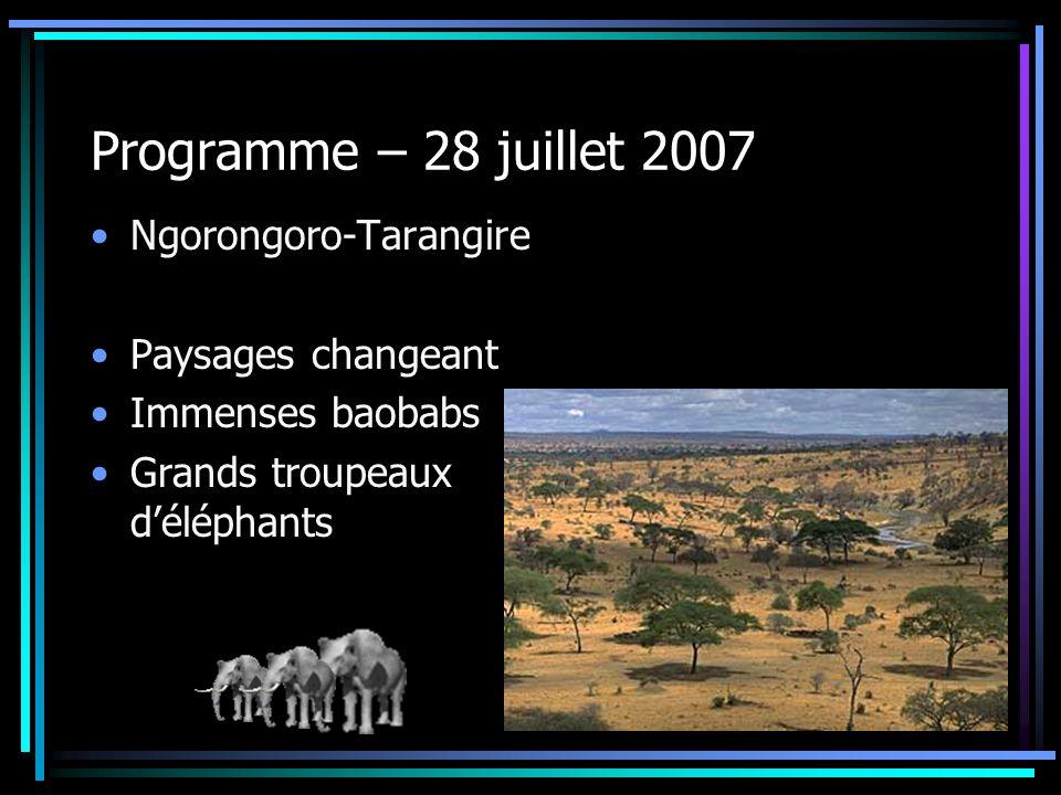Programme – 28 juillet 2007 Ngorongoro-Tarangire Paysages changeant Immenses baobabs Grands troupeaux déléphants