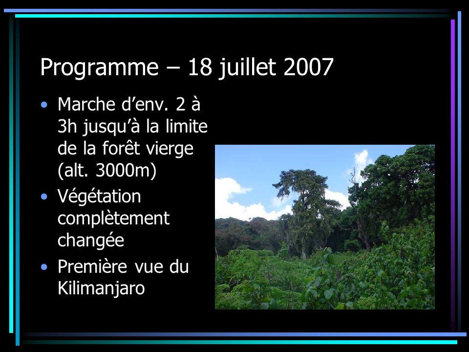 Programme – 18 juillet 2007 Marche denv. 2 à 3h jusquà la limite de la forêt vierge (alt. 3000m) Végétation complètement changée Première vue du Kilim