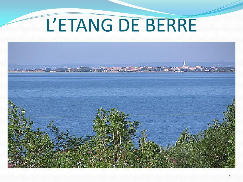 PROBLEMATIQUE De linfluence de lusine EDF de Saint Chamas sur la salinité de leau, plus particulièrement pour les poissons.