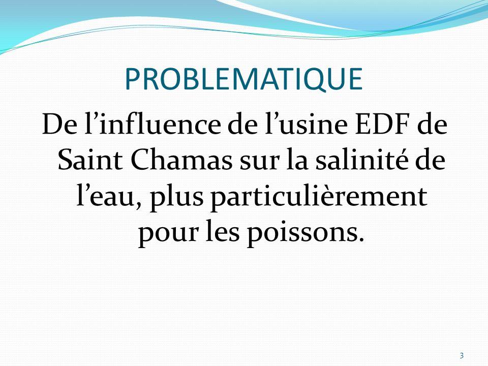 PROBLEMATIQUE De linfluence de lusine EDF de Saint Chamas sur la salinité de leau, plus particulièrement pour les poissons. 3
