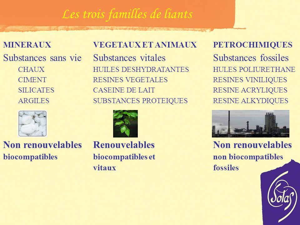 Composition base de peinture et vernis Pigments et chargesLiants et adjuvants Terre colorante Oxyde de fer Végétaux Animaux Pétrochimiques Etc. Carbon