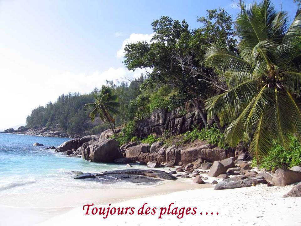 Des plages ….