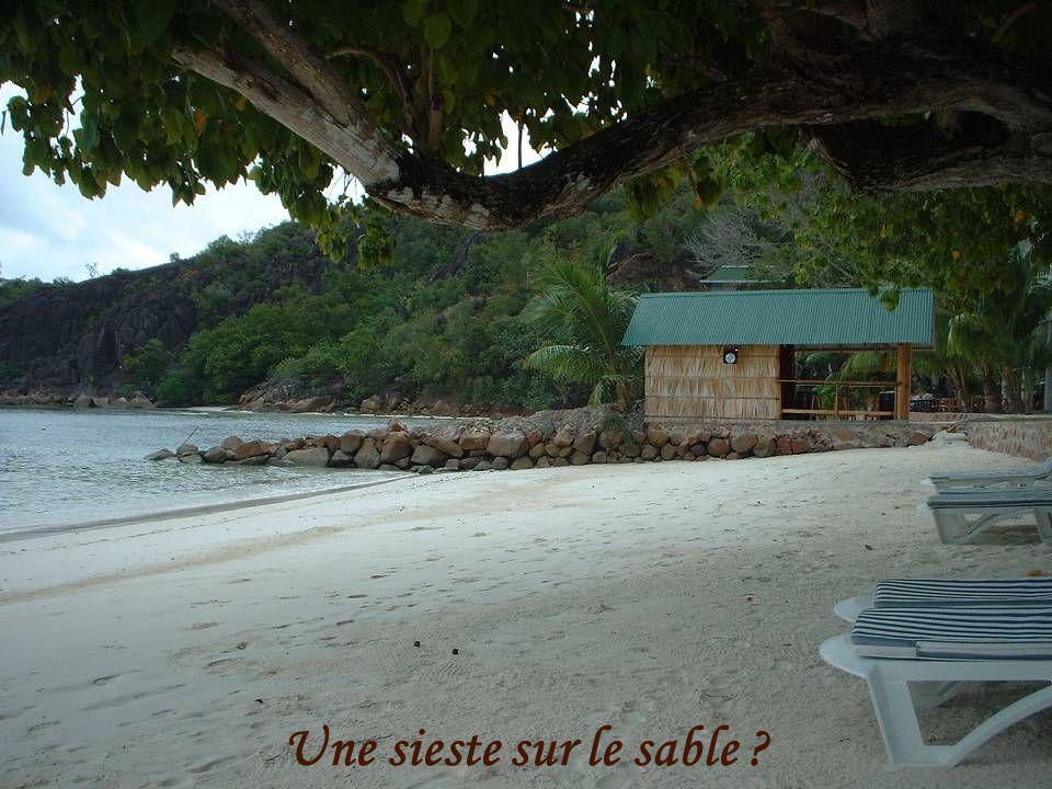 Toujours des plages ….