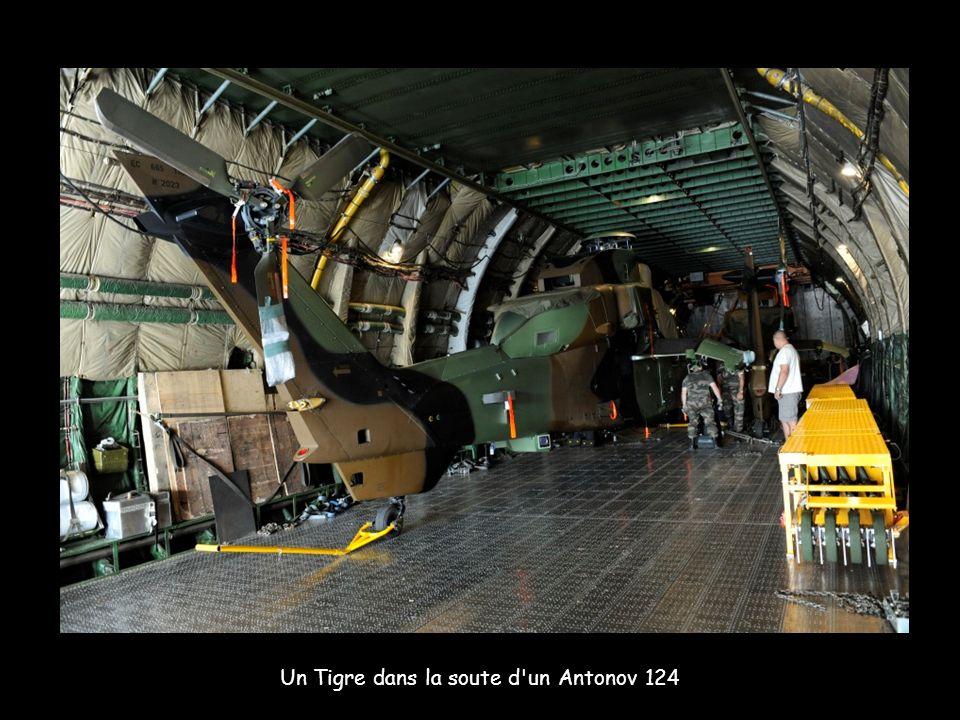 Un Tigre dans la soute d'un Antonov 124