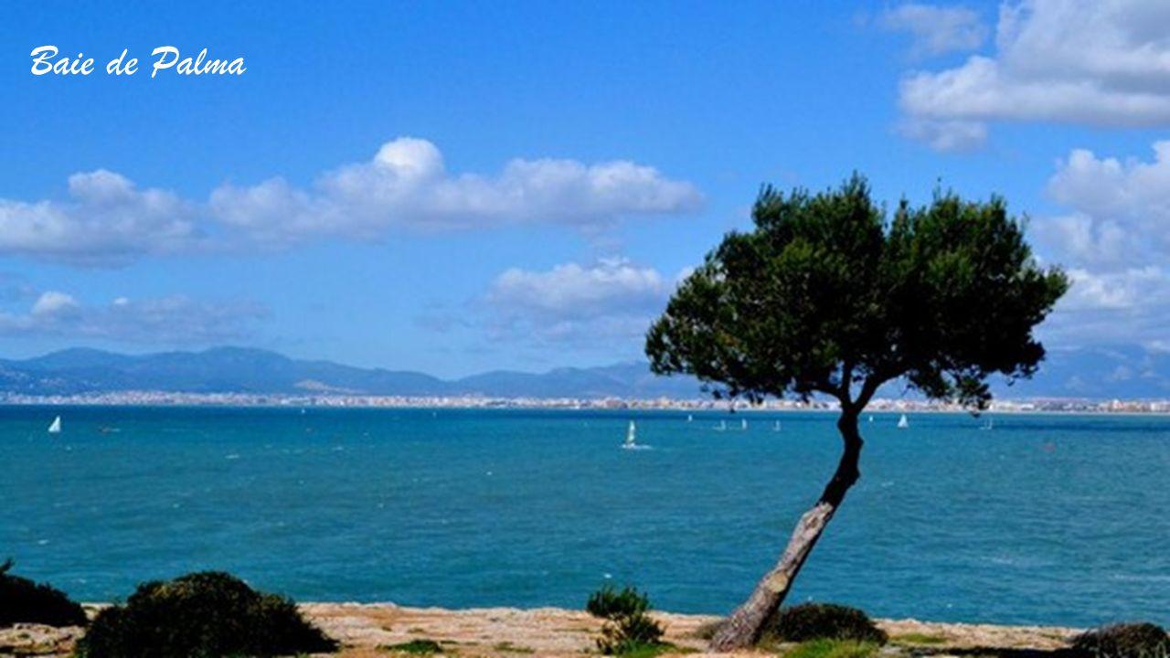 Au Port de Mahon