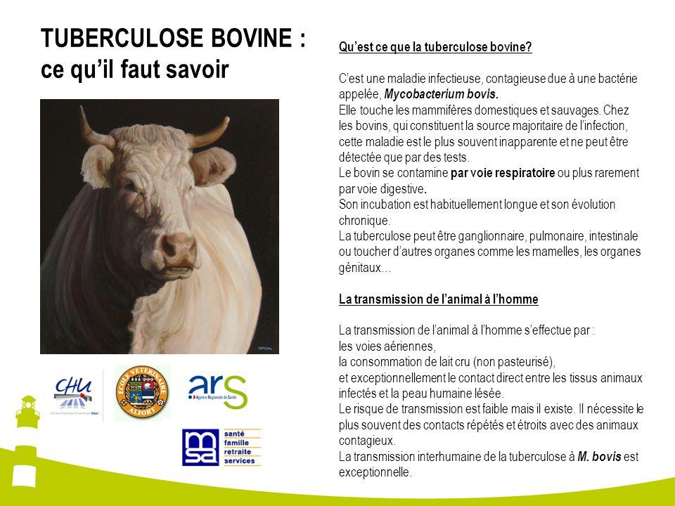TUBERCULOSE BOVINE : ce quil faut savoir Quest ce que la tuberculose bovine? Cest une maladie infectieuse, contagieuse due à une bactérie appelée, Myc
