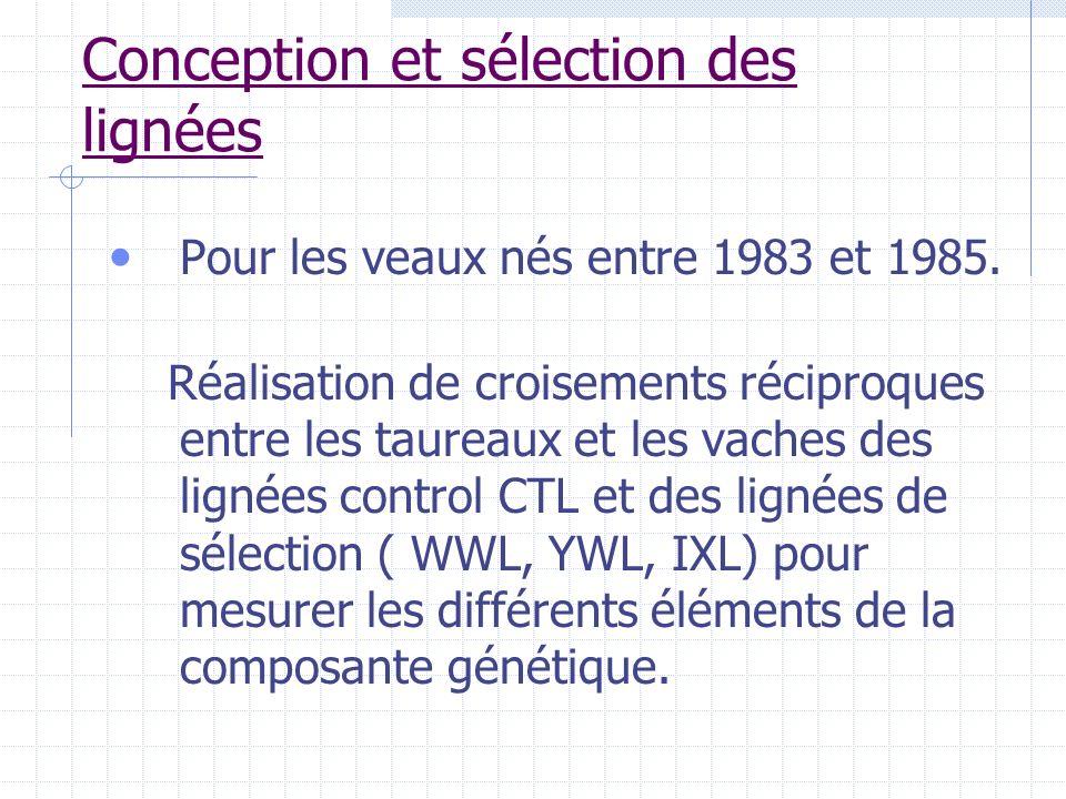 Conception et sélection des lignées Pour les veaux nés entre 1983 et 1985. Réalisation de croisements réciproques entre les taureaux et les vaches des