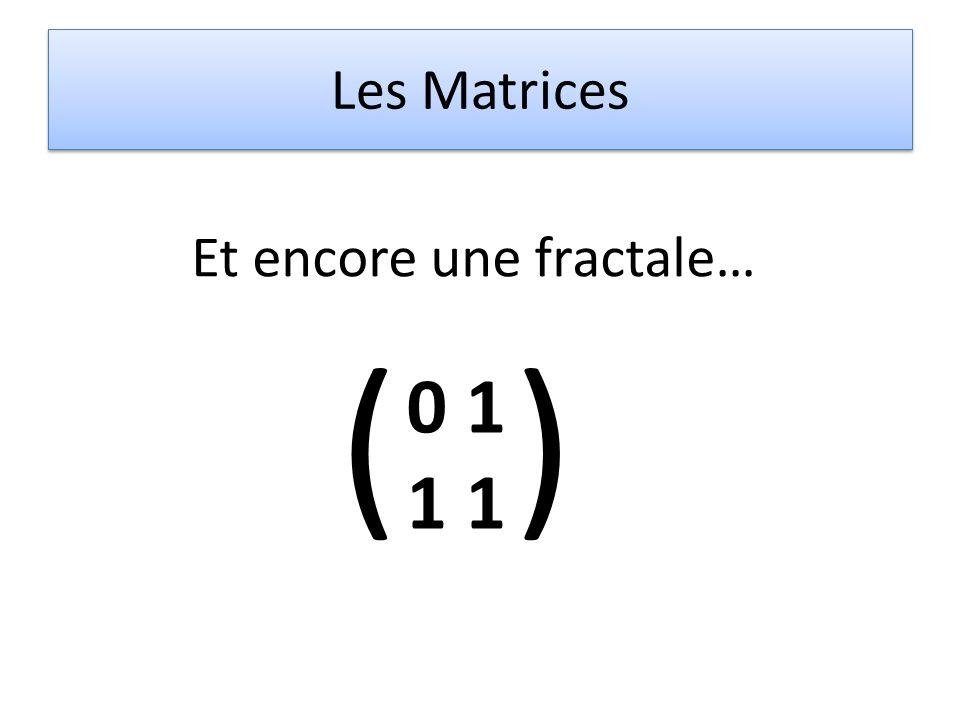 Les Matrices Et encore une fractale… ( 0 1 1 )