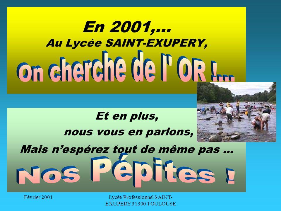 Février 2001Lycée Professionnel SAINT- EXUPERY 31300 TOULOUSE Lycée professionnel SAINT-EXUPERY 143 rue Dominique Clos 31300 TOULOUSE