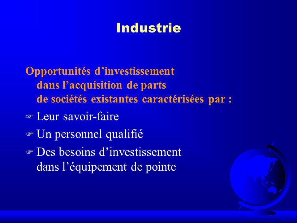 Industrie Opportunités dinvestissement dans lacquisition de parts de sociétés existantes caractérisées par : F Leur savoir-faire F Un personnel qualif