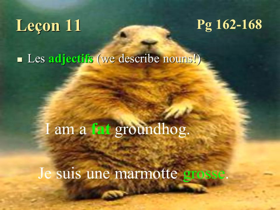 Leçon 11 Les adjectifs (we describe nouns!) Les adjectifs (we describe nouns!) I am a fat groundhog. Je suis une marmotte grosse. Pg 162-168