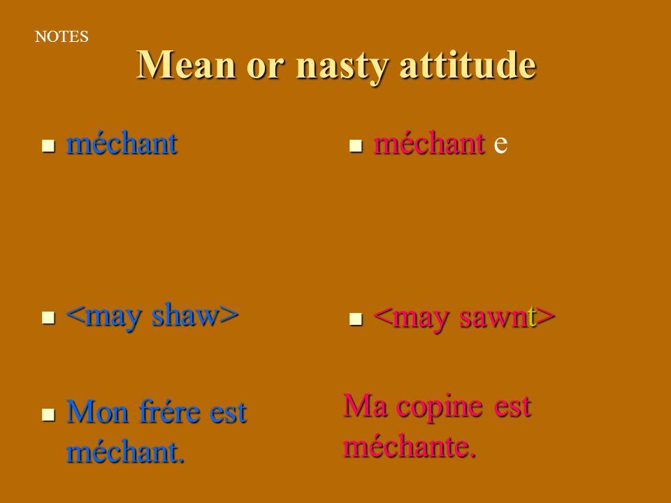 Mean or nasty attitude méchant méchant Mon frére est méchant. Mon frére est méchant. e Ma copine est méchante. NOTES